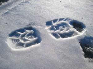 Bootprint - Ice Fishing in Wisconsin
