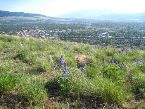 Missoula from North Hills