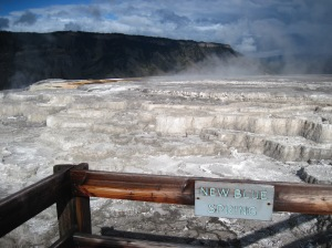 New Blue Spring, Mammoth Hot Springs, Yellowstone