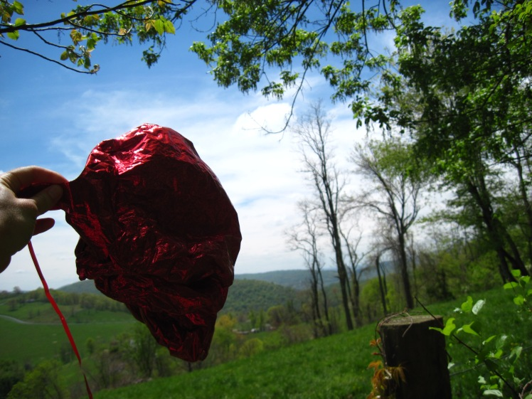Heart Balloon and Virginia