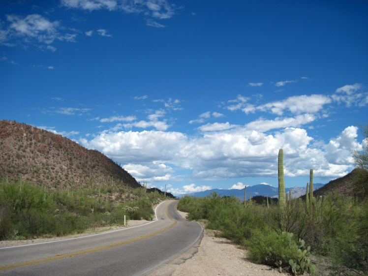 Saguaro National Park. I guess I didn't do this park right because I kind of didn't like it. Tuscon is hot and there are lots of cars in Tuscon.
